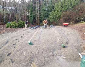 Septic field installation and backfilling in Victoria BC